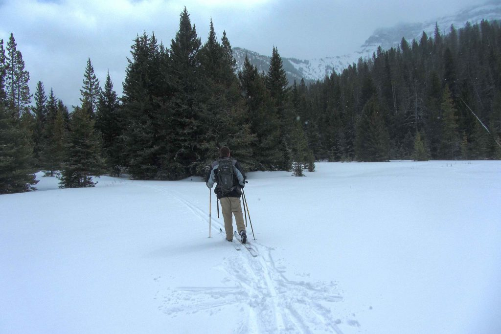Cross-country skiing in Yellowstone National Park.