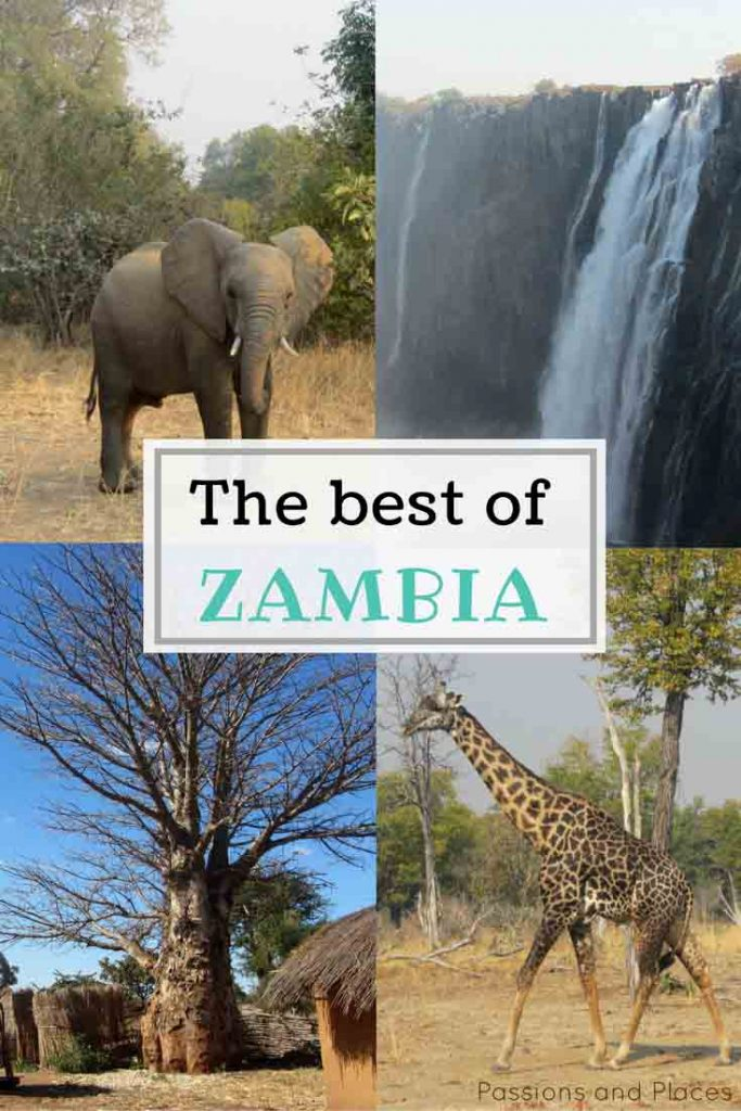 Zambia's not the most popular destination, but it has so much to offer. Our photos and introductory guide will convince you to visit!