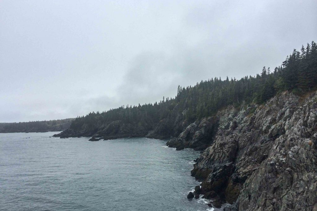 Hiking Away from the Crowds: Maine's Cutler Coast