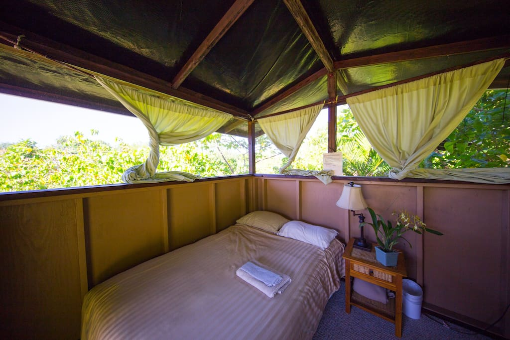 Image Result For A Blue Bungalow In Pahoa In Hawaii