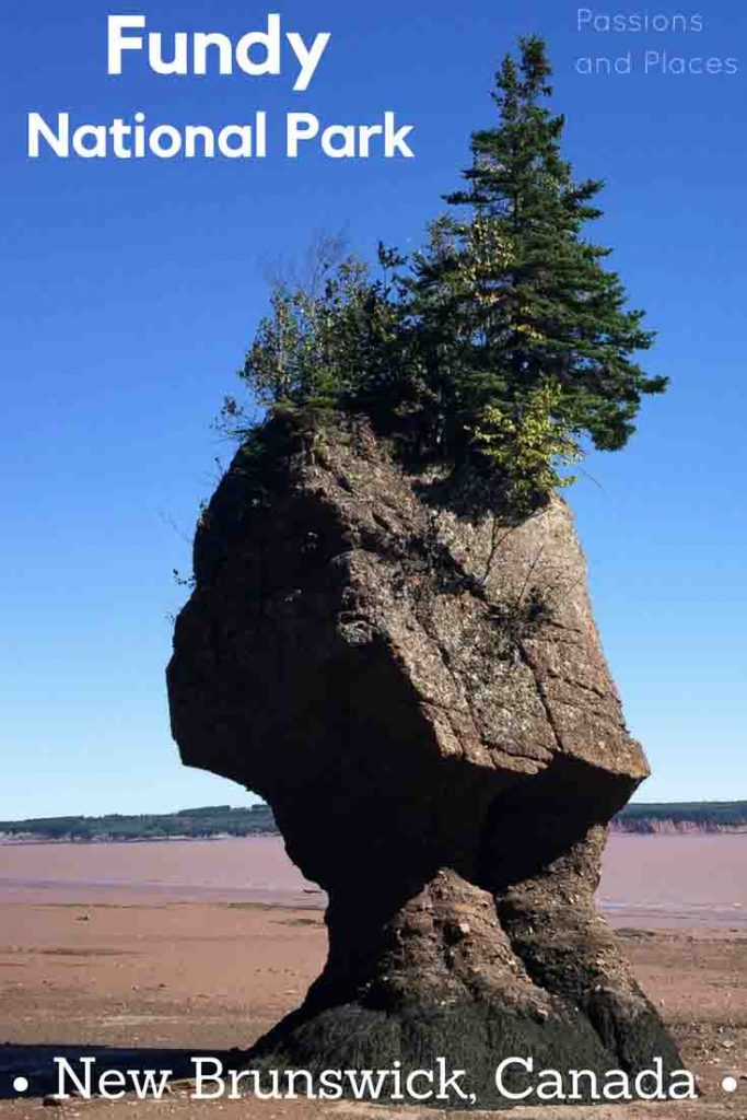 Fundy National Park in New Brunswick makes a great road trip or long weekend getaway, especially if you live on the East Coast of the U.S. or Canada. This guide covers all the best hiking, camping, and other activities the park has to offer, including the unique Hopewell Rocks in the Bay of Fundy.