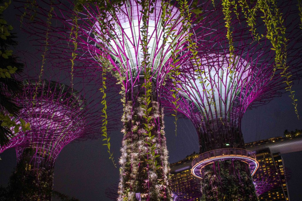 Singapore is the world's most expensive city, and travel there is shockingly pricey compared to the rest of Southeast Asia. Backpacking Singapore on a tight budget is a challenge, but these tips will help! From accommodations and food to transportation and things to do, this guide explains has the best ways to save money in Singapore.