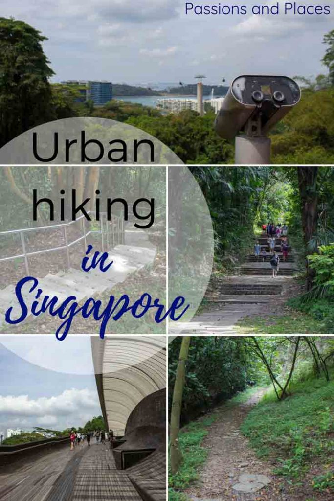 Hiking in Singapore might sound like an oxymoron, but the city is surprisingly packed with green spaces and walking trails. The Southern Ridges trail weaves through the city for six miles, covering the iconic Alexandra Arch and Henderson Waves. Hiking the Southern Ridges trail is free, so it's a great option for anyone looking to visit Singapore on a budget.