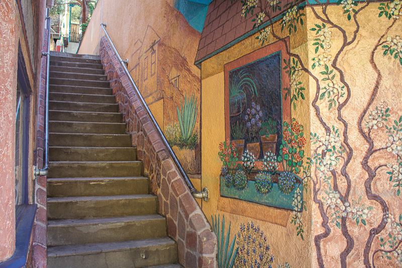 An outdoor staircase next to a wall with murals of plants and windows.