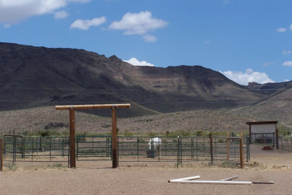 White horse inside a corral in front of bare hills.
