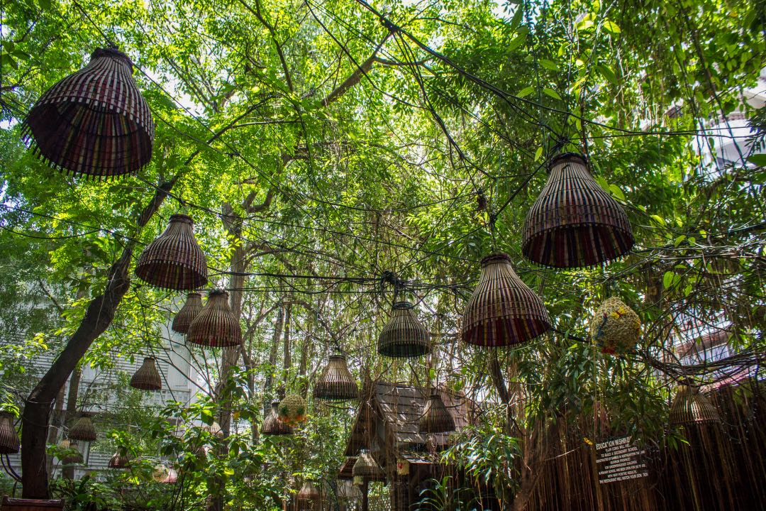 Network of bamboo lamp shades below a canopy of leafy trees.
