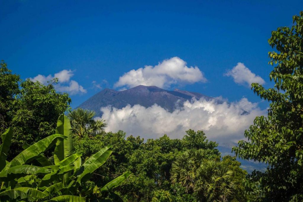 Towering volcano against a blue sky with a few clouds floating around the peak. Palm fronts sit in the foreground framing the volcano.