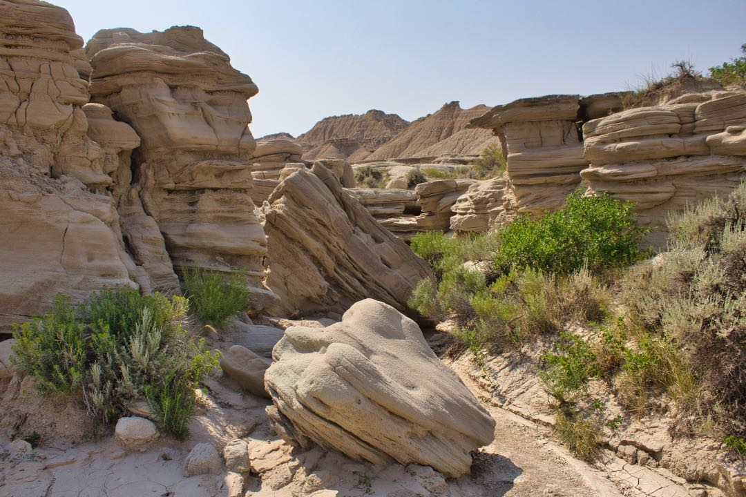 Tan-colored, mushroom-shaped sandstone rock formations with small green bushes in the foreground.