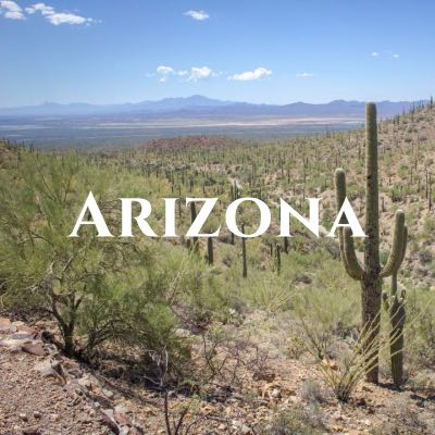 """""""Arizona"""" written across a photo of a field of cactuses with mountains in the distance."""