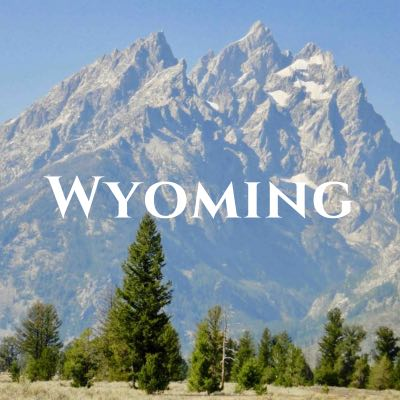 """""""Wyoming"""" written across a photo of jagged mountain peaks behind pine trees."""